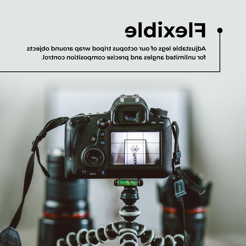 Large Flexible Gorillapod iPhone Camera Digital Canon