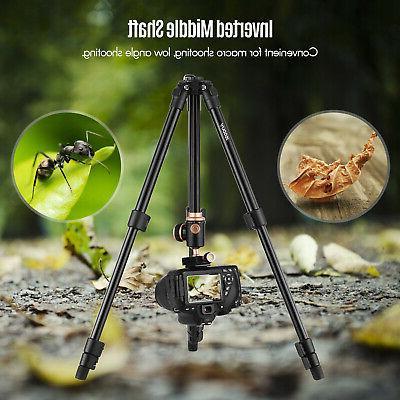 Andoer Professional Portable Ball Nikon DSLRs O9V5